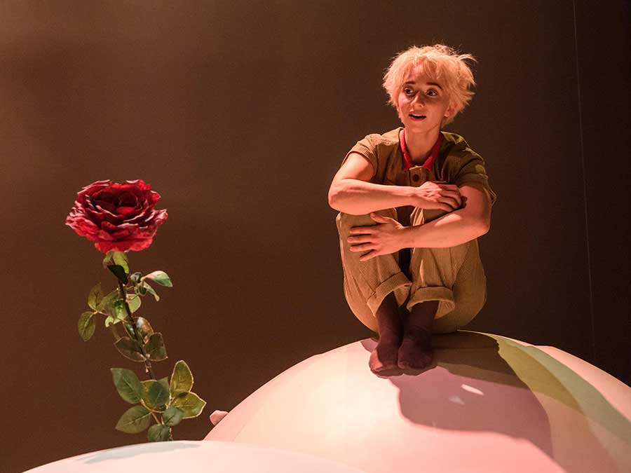 The Little Prince sits on a white ball, hugging his knees into his chest. He gazes at the red rose in the foreground.